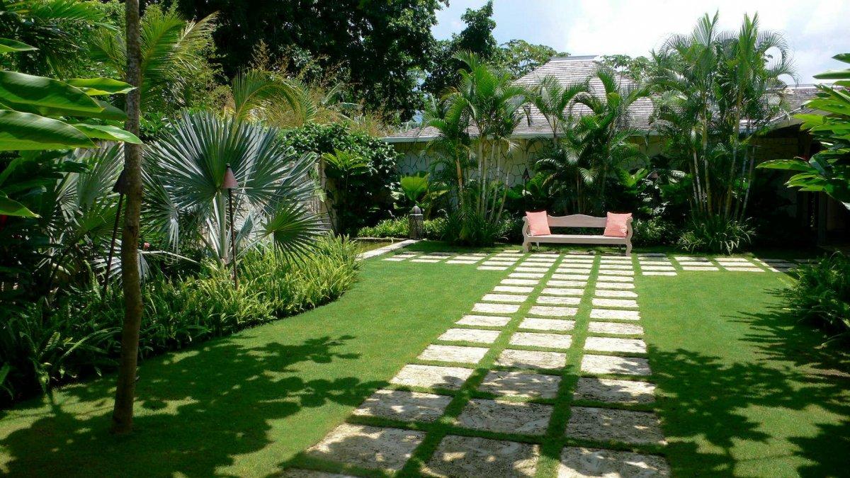08 Dec Fresh Tropical Garden With Concrete Pathways Palm Tree And Green  Garden Grass