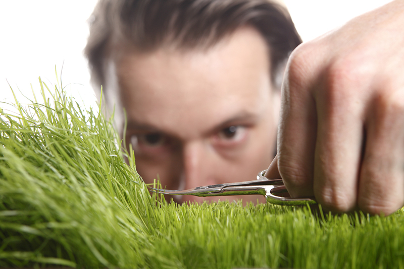 landscaping, lawn care and mowing